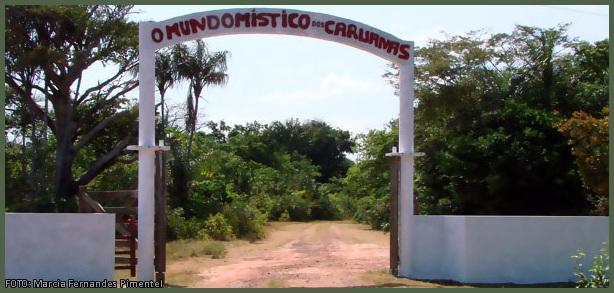 A INSTITUIÇÃO CARUANAS